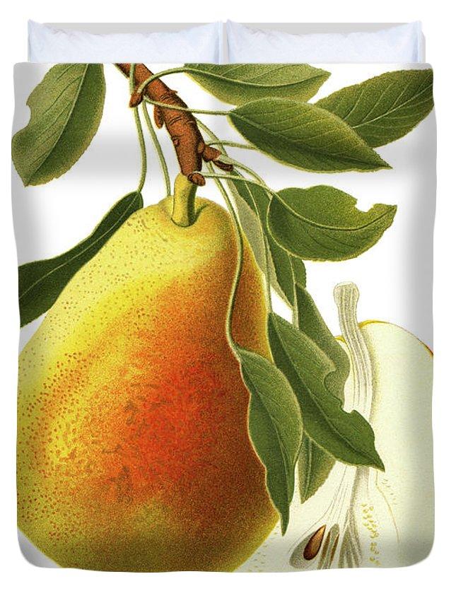 Art Duvet Cover featuring the digital art Pear by Ivan-96