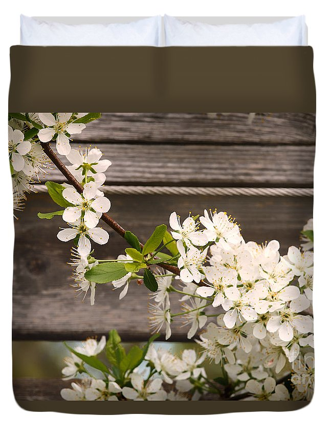 White Duvet Cover featuring the photograph Pear Tree Blossoms by Mary Smyth