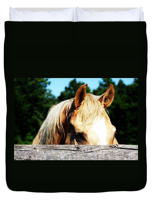 Horse Duvet Cover featuring the photograph Peek A Boo Trigger by Tina Meador