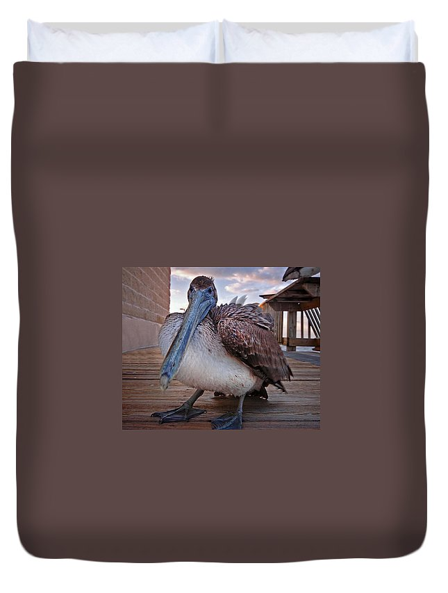 Alabama Duvet Cover featuring the digital art Pelican Close And Low by Michael Thomas
