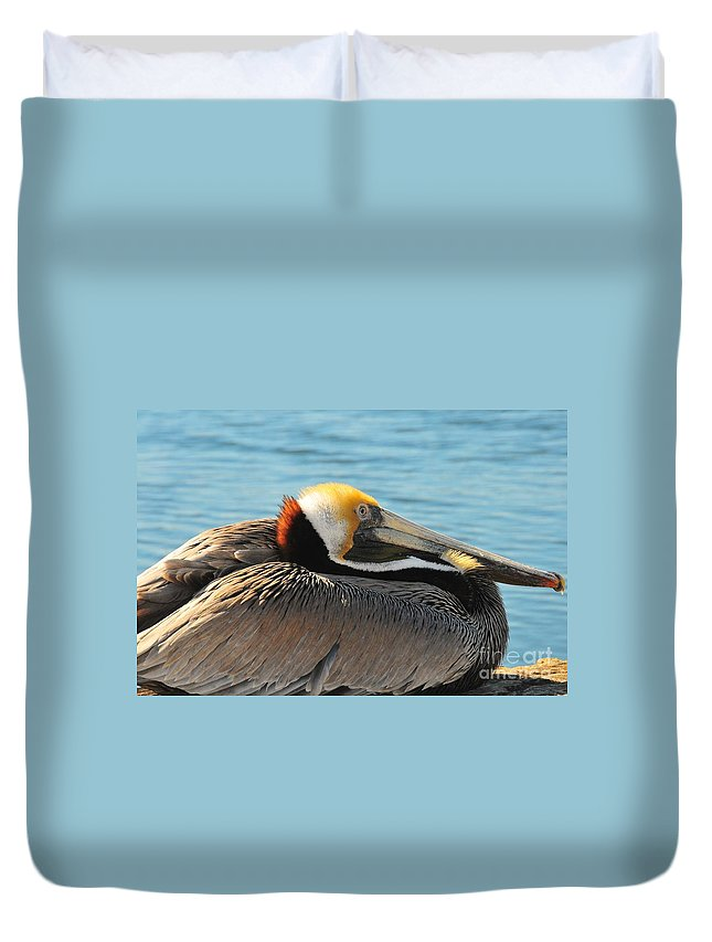 Duvet Cover featuring the pyrography Pelican by Marie Stephens