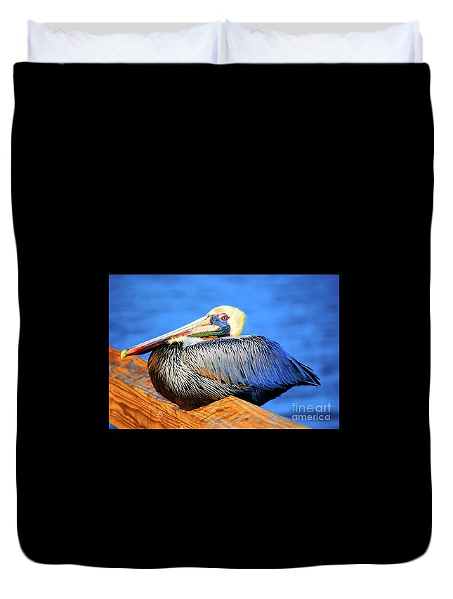 Pelican Duvet Cover featuring the photograph Pelican Rest by Jost Houk