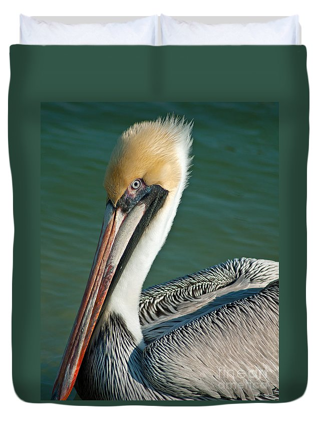 Pelican Duvet Cover featuring the photograph Pelican by Stephen Whalen