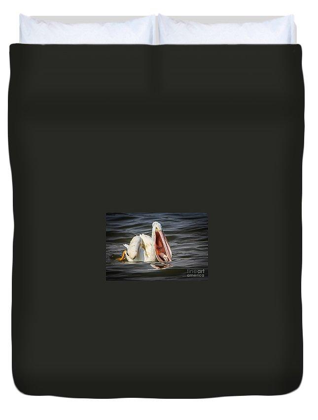Pelican Duvet Cover featuring the photograph Pelican by Warrena J Barnerd
