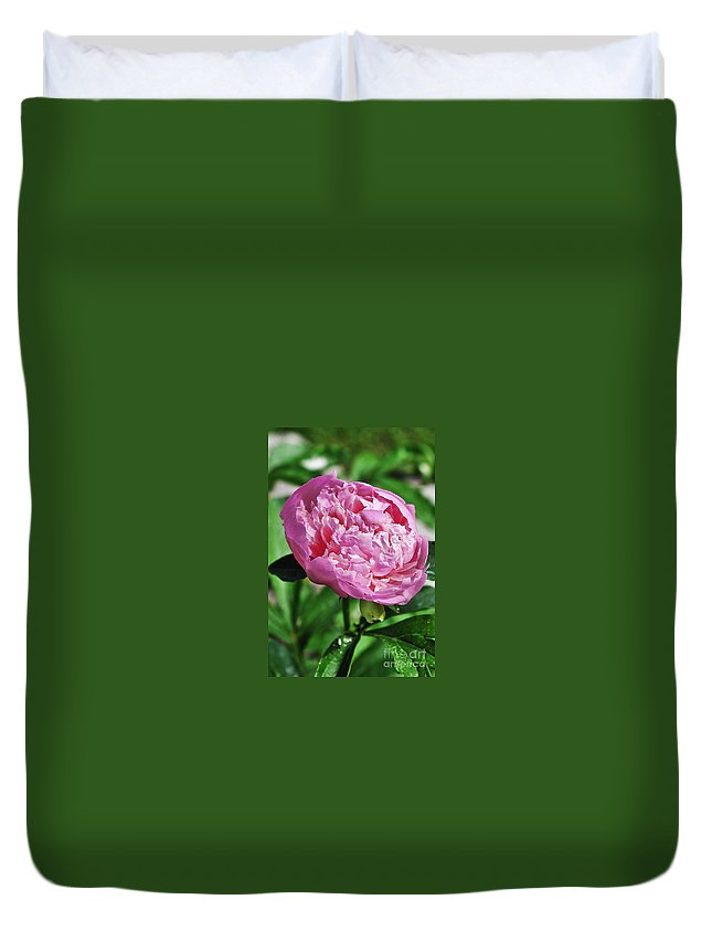 Peony Duvet Cover featuring the photograph Peony by Gwen Gibson