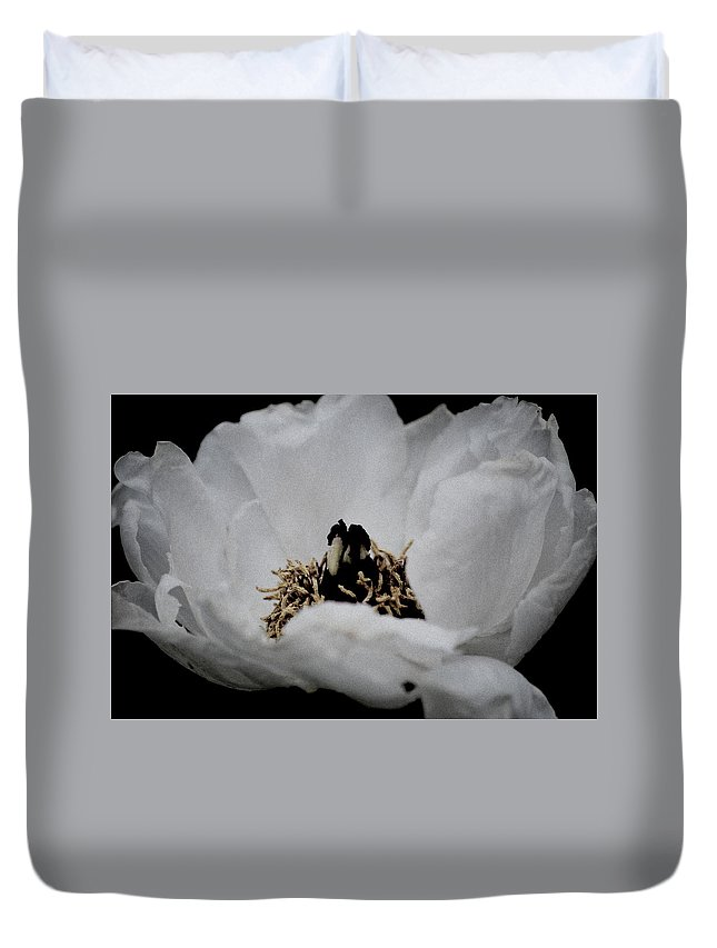 Peony Duvet Cover featuring the photograph Peony Lovely by Kathy Sampson