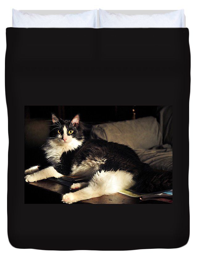 Cat Duvet Cover featuring the photograph Pepe In Repose by Keith Gondron