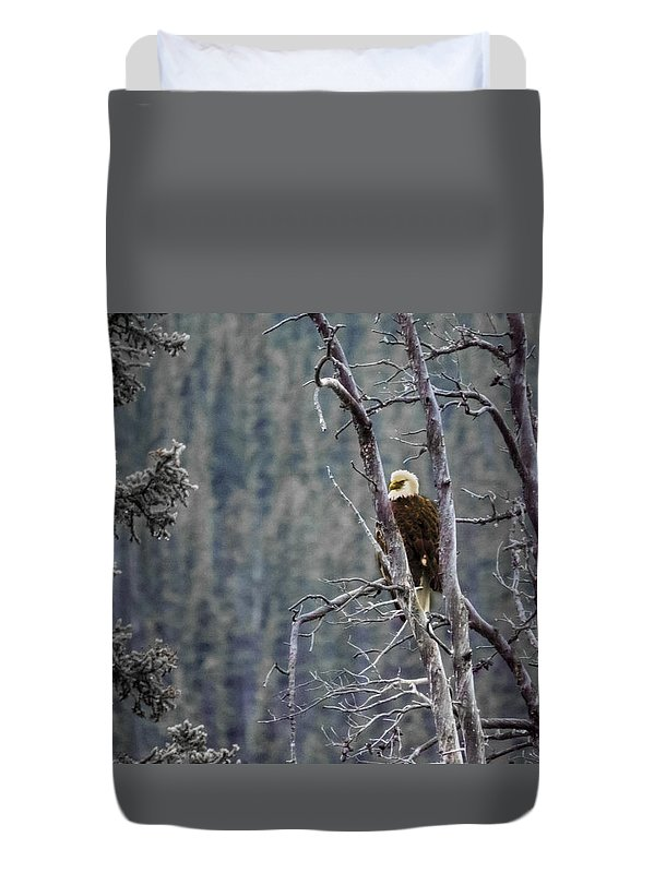 Feather Duvet Cover featuring the photograph Perched by Jo-Anne Gazo-McKim