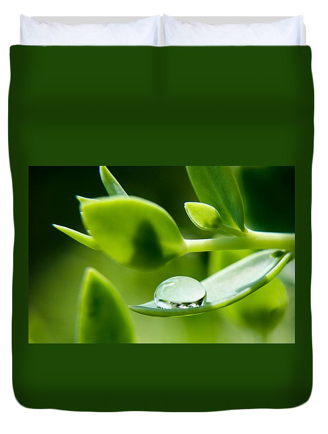 Perfect Raindrop Duvet Cover featuring the photograph Perfect Raindrop by Cynthia Woods