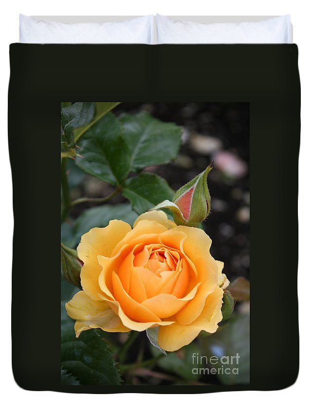Rose Duvet Cover featuring the photograph Perfect Rose by Christiane Schulze Art And Photography