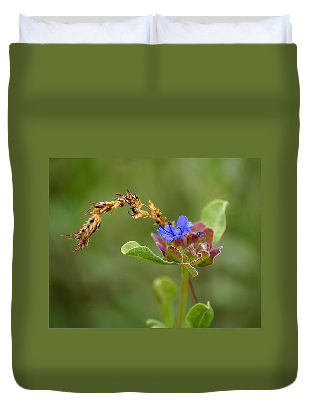 Flowers Duvet Cover featuring the photograph Perfectly Wonderous Flowerland by Ben Upham III