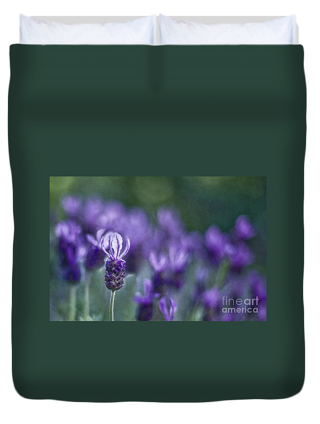 Lavender Duvet Cover featuring the photograph Perfume Of Summer by Maria Ismanah Schulze-Vorberg