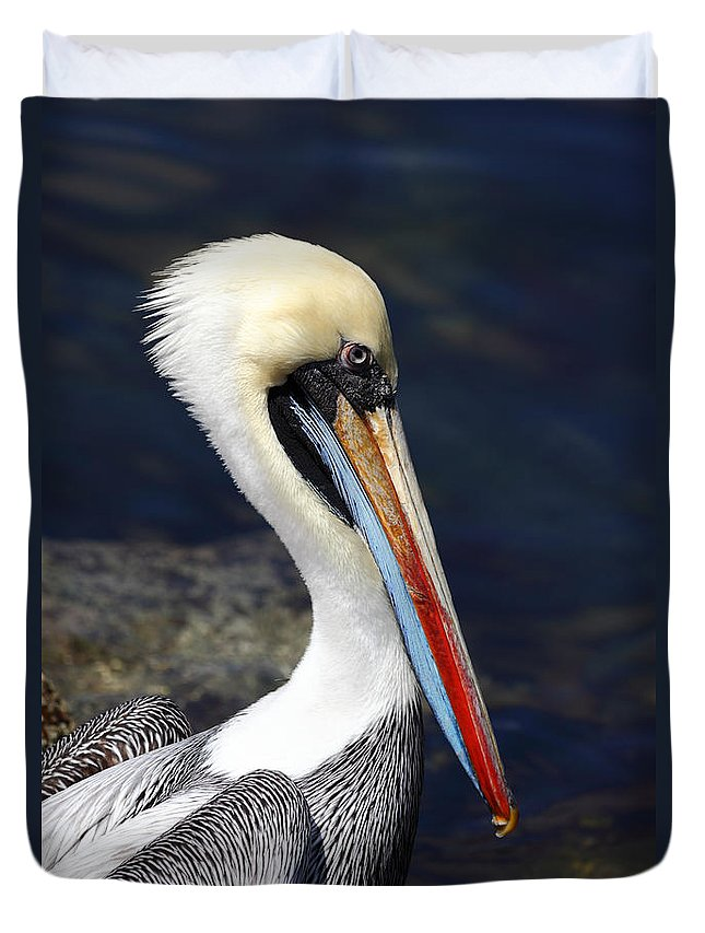Pelican Duvet Cover featuring the photograph Peruvian Pelican Portrait by James Brunker