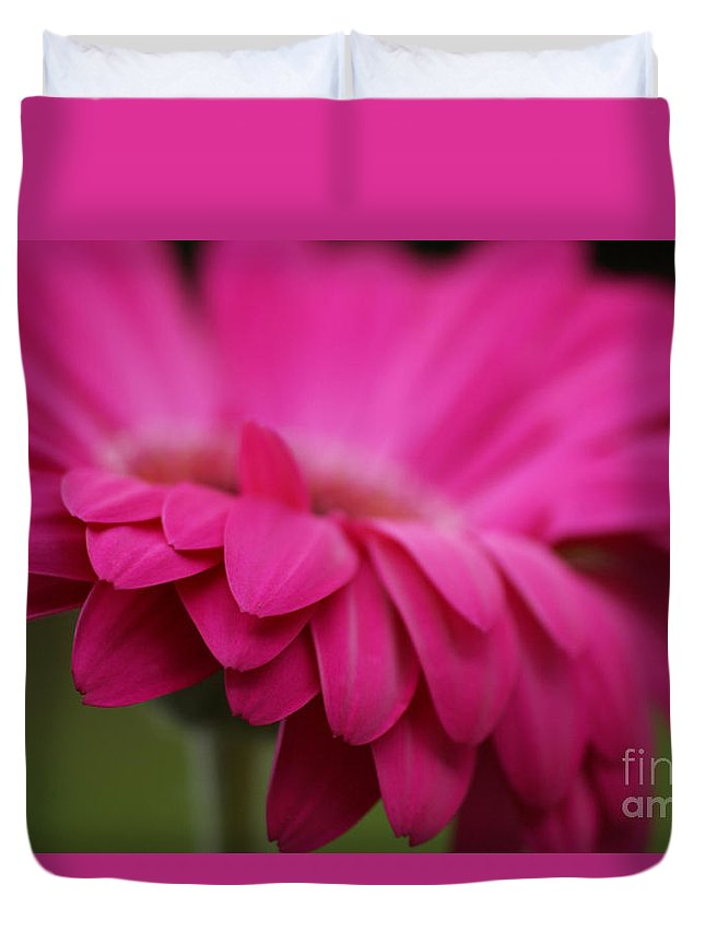 Pink Duvet Cover featuring the photograph Petals Pink by Carol Lynch