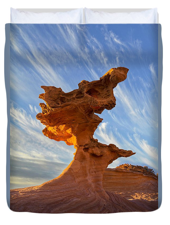 Nevada Duvet Cover featuring the photograph Petrifin by Dustin LeFevre