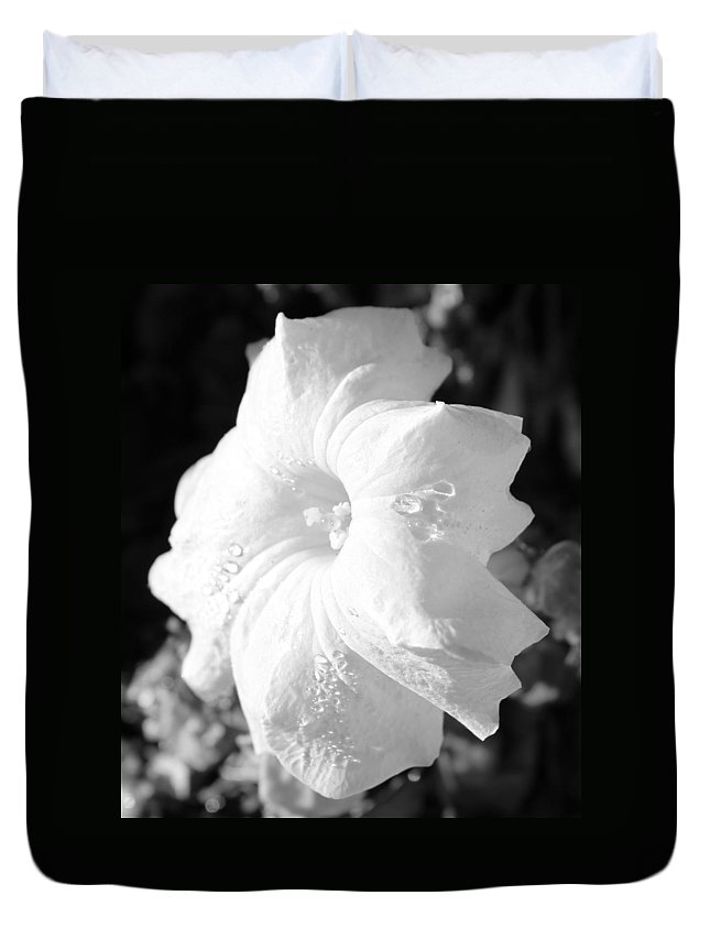 Floral Duvet Cover featuring the photograph Petunia After Rain by Kume Bryant