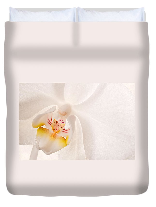 Orchid Duvet Cover featuring the photograph Phalaenopsis White Orchid by Bobbie Climer