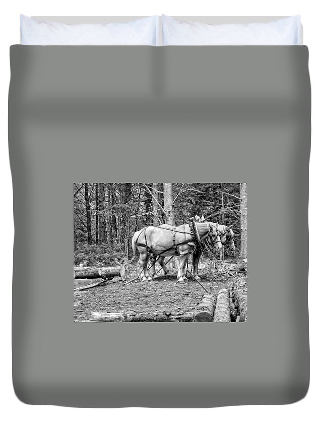 Horses Duvet Cover featuring the photograph Photograph Of Horses Pulling Logs In Maine Forest by Keith Webber Jr
