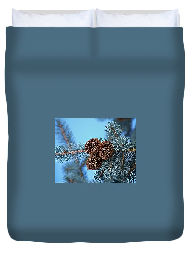 Christmas Duvet Cover featuring the photograph Pine Cones by Ernie Echols