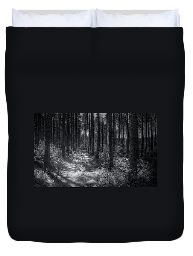 Trees Duvet Cover featuring the photograph Pine Grove by Scott Norris