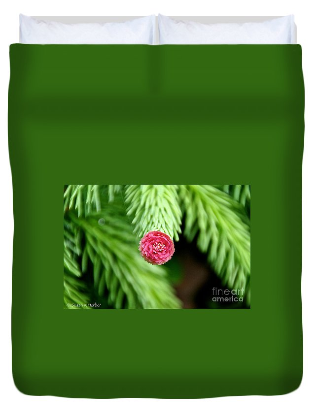 Conifer Duvet Cover featuring the photograph Pine Perfection by Susan Herber