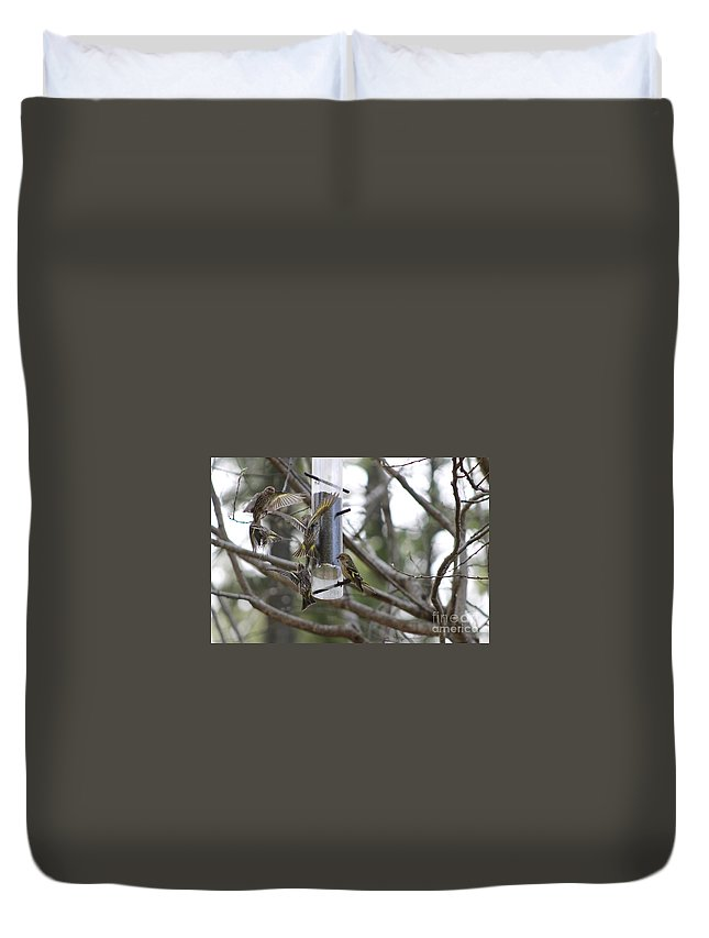 Pine Siskin Duvet Cover featuring the photograph Pine Siskins In Flight by Leone Lund
