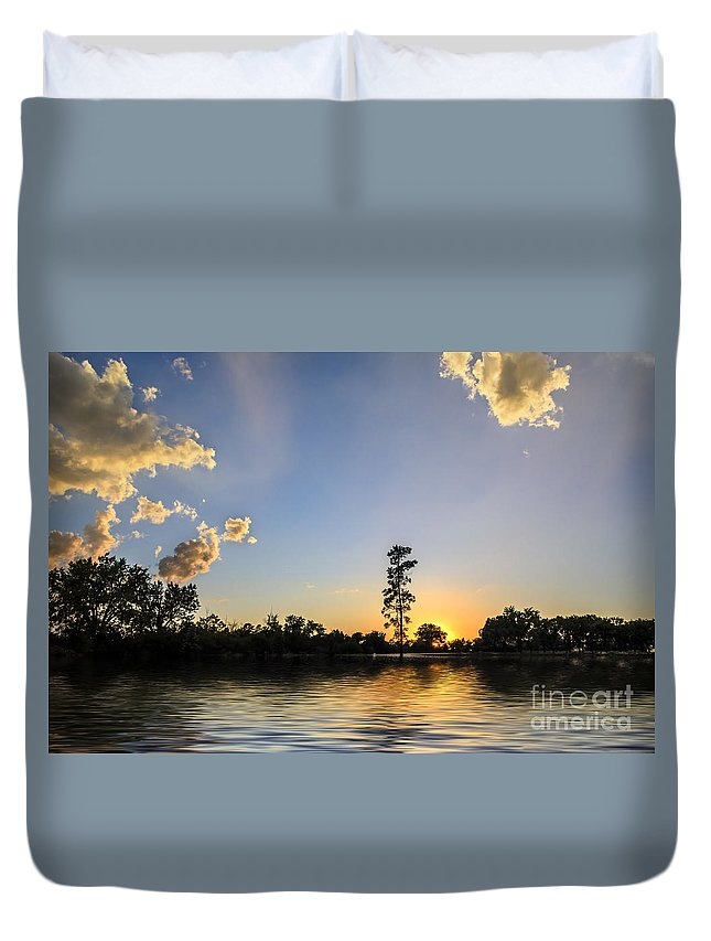 Pine Tree Duvet Cover featuring the photograph Pine Tree At Sunset by Viktor Birkus