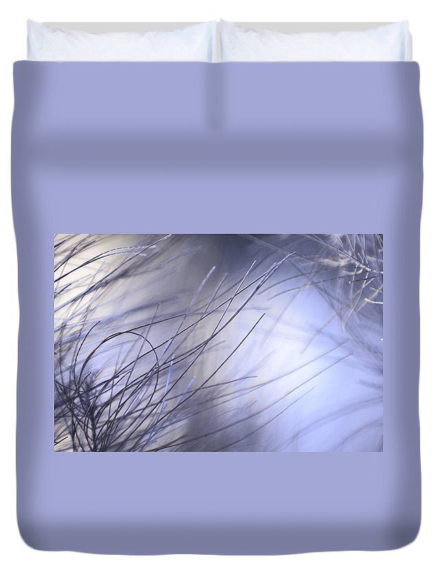 Pine Duvet Cover featuring the photograph Pine Tree Needles 1 by Jenny Rainbow