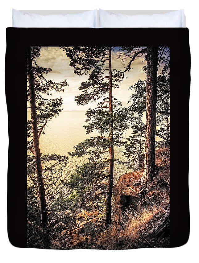 Nature Duvet Cover featuring the photograph Pine Trees Of Holy Island by Jenny Rainbow