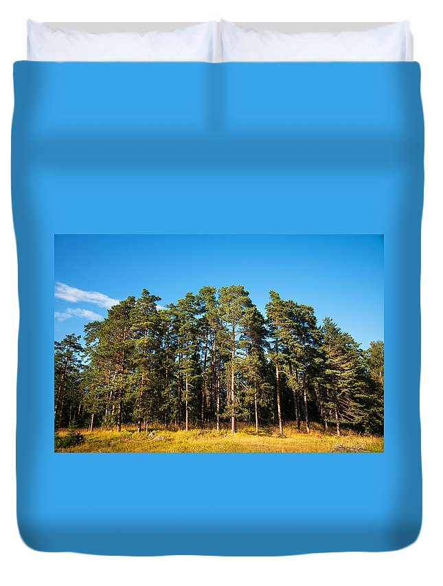 Island Duvet Cover featuring the photograph Pine Trees Of Valaam Island by Jenny Rainbow