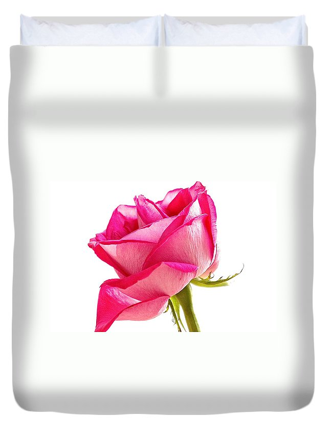 Petal's Duvet Cover featuring the photograph Pink 2 by Gillis Cone