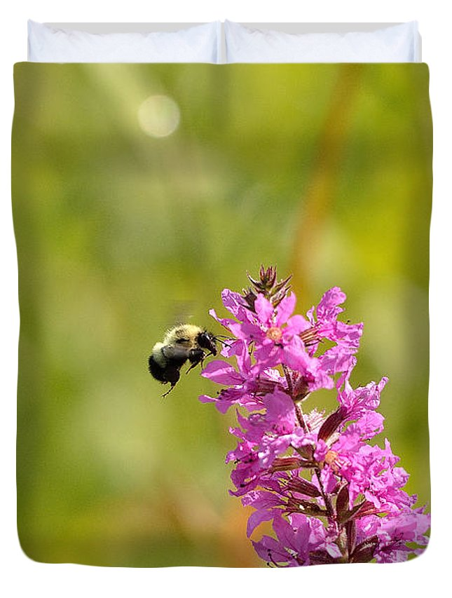 Bee Duvet Cover featuring the photograph Pink And Gold by David Porteus