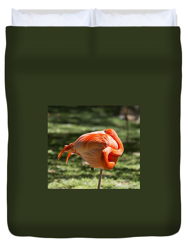 Phoenicopterus Ruber Ruber Duvet Cover featuring the photograph Pink And Orange Ball by John M Bailey