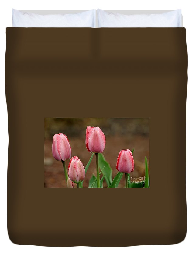 Tulips Duvet Cover featuring the photograph Pink And Perfect by Living Color Photography Lorraine Lynch