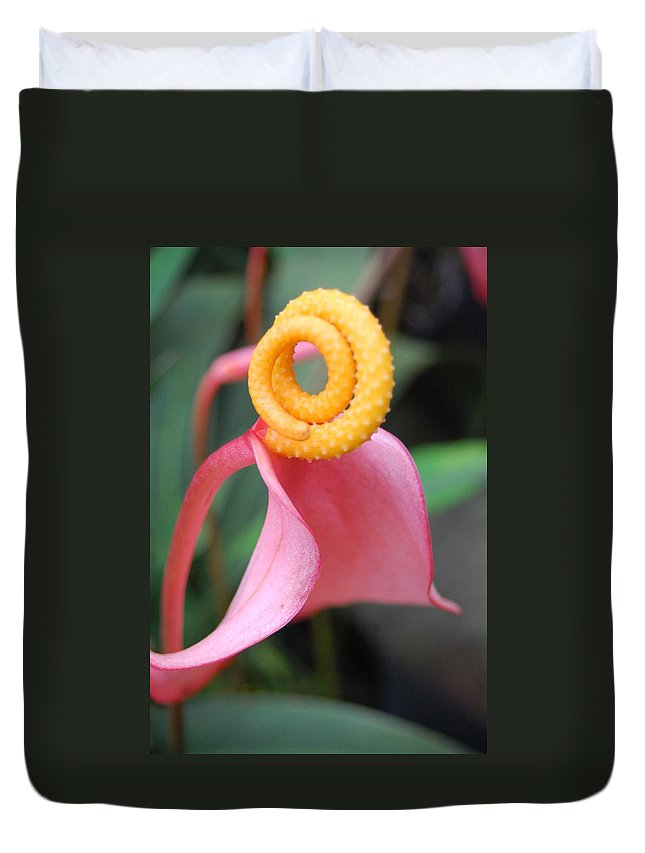 Kula Botanical Gardens Duvet Cover featuring the photograph Pink And Yellow Orchids 2 by Amy Fose
