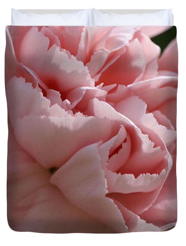 Pink Duvet Cover featuring the photograph Pink Carnation by Carol Lynch