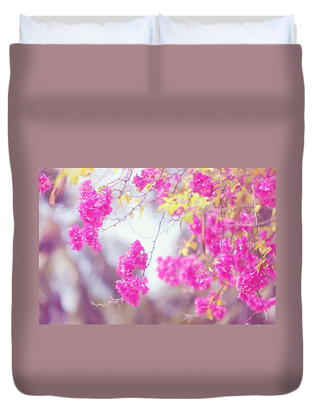 Bougainvillea Duvet Cover featuring the photograph Pink Cascade Of Bougainvillea by Jenny Rainbow