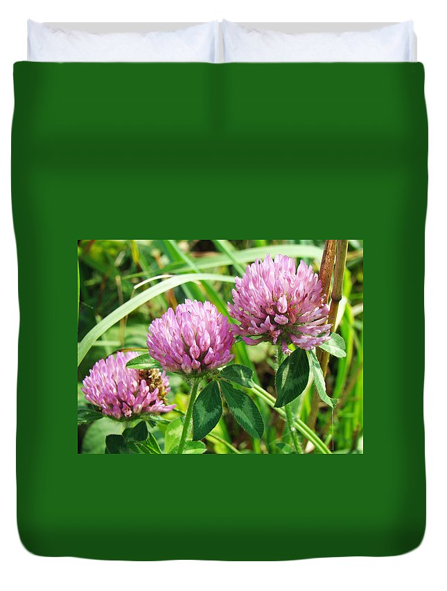 Wildflower Duvet Cover featuring the photograph Pink Clover Wildflower - Trifolium Pratense by Mother Nature