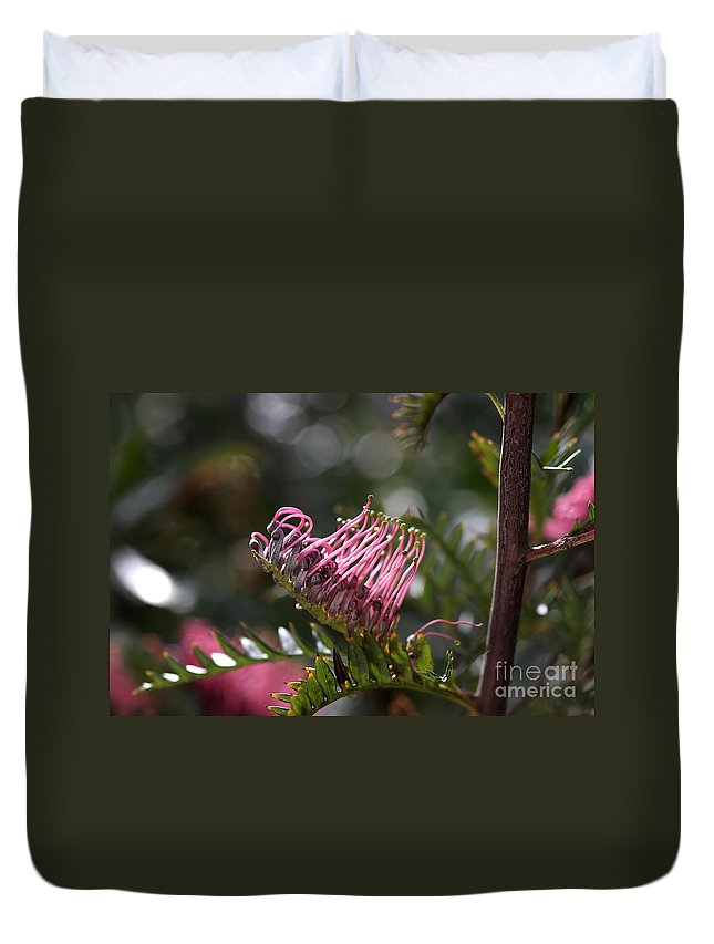 Flower Duvet Cover featuring the photograph Pink Grevillea by Joy Watson
