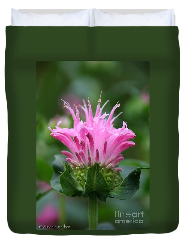Flower Duvet Cover featuring the photograph Pink July by Susan Herber
