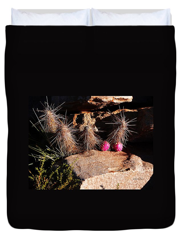 Prickly Duvet Cover featuring the photograph Pink Lady Cactus by Xueling Zou