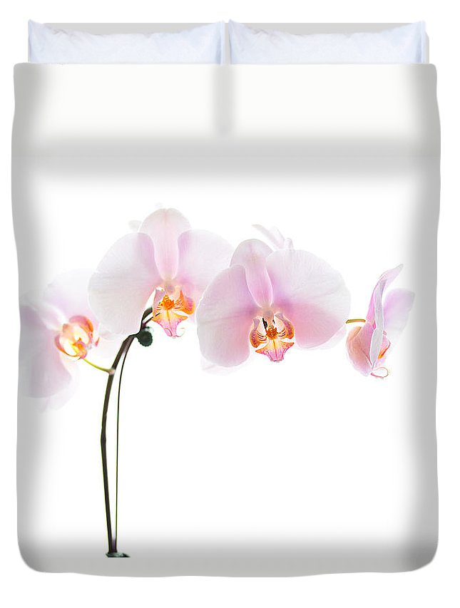 Orchid Duvet Cover featuring the photograph Pink Orchid Flowers by Stephanie McDowell