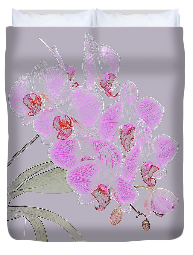 Haslemere Duvet Cover featuring the photograph Pink Orchids As Coloured Pencil Drawing by Rosemary Calvert