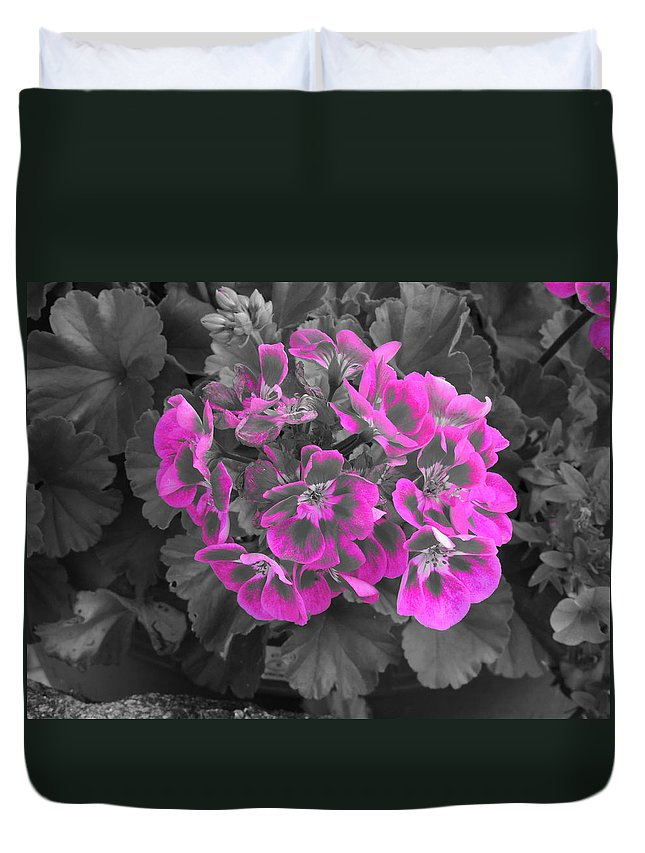 Pink Duvet Cover featuring the photograph Pink Paridise by Natasha Anderson