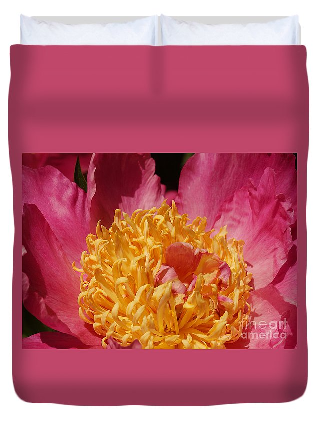 Flora Duvet Cover featuring the photograph Pink Peony 3 by Rudi Prott