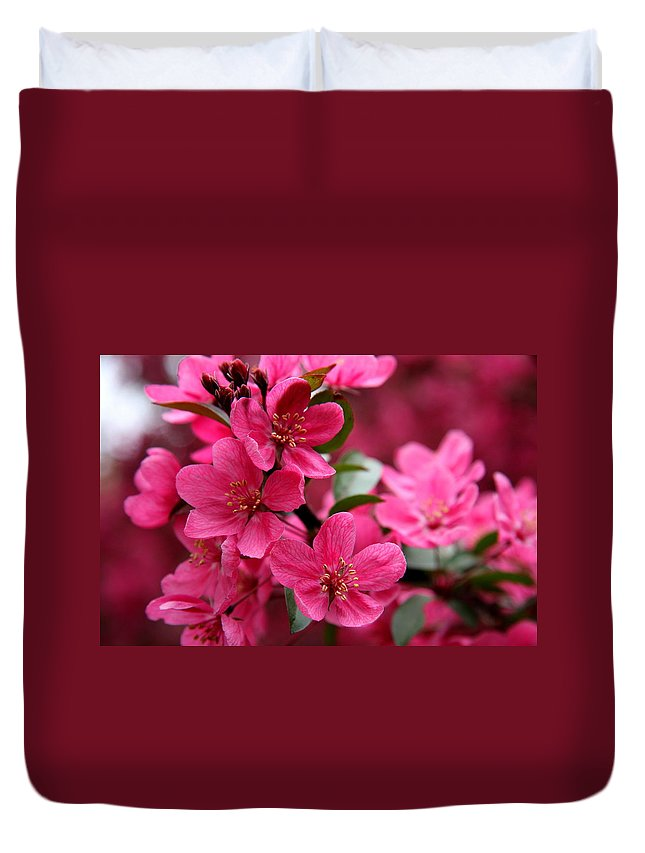 Plum Blossoms Duvet Cover featuring the photograph Pink Plum Blossoms by Christiane Schulze Art And Photography