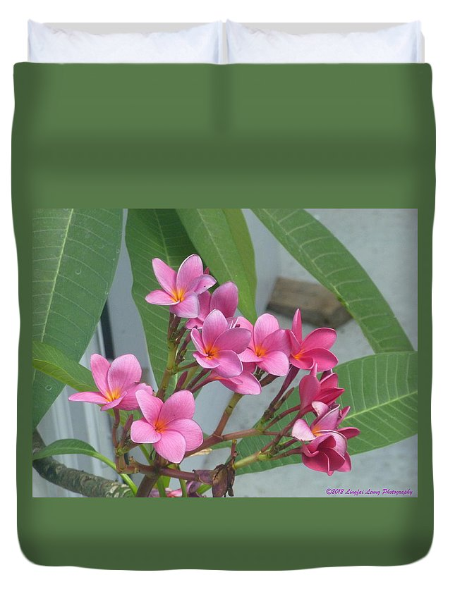 Flowers From The Tropics Duvet Cover featuring the photograph Pink Plumeria by Lingfai Leung