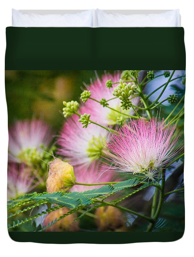 Flower Duvet Cover featuring the photograph Pink Pom Poms by Bill Pevlor