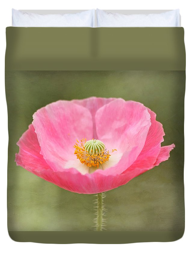 Poppy Duvet Cover featuring the photograph Pink Poppy Flower by Kim Hojnacki