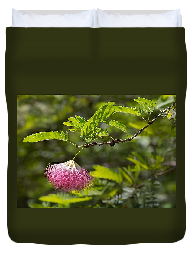 Flower Duvet Cover featuring the photograph Pink Powderpuff Blossom by John M Bailey